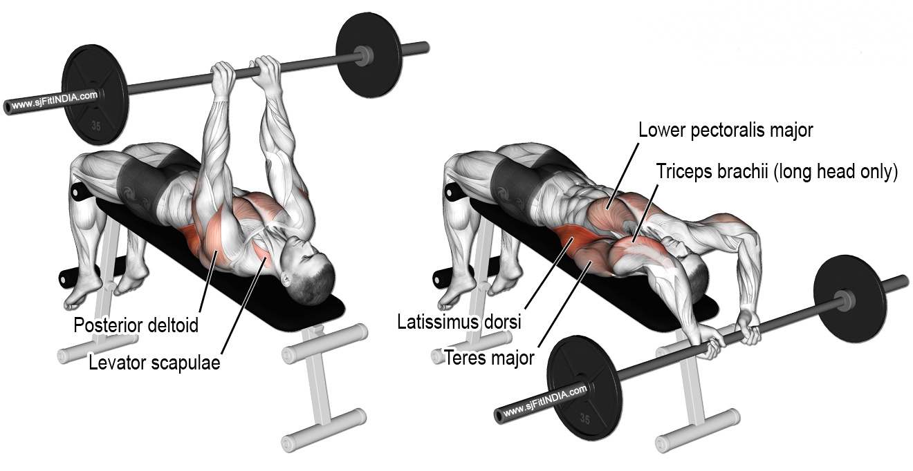 Decline Bench Dumbbell Pull-Over